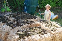 Simple, Green, Frugal Co-op: A Beginner's Guide to Straw Bale Gardening