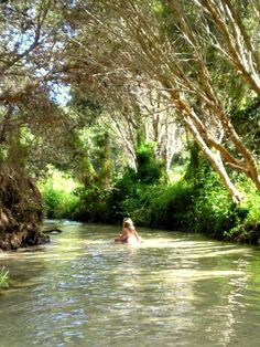 Eli Creek, Fraser Island, Queensland Australia... crystal clear freshwater creek that you can wade in all the way to the ocean