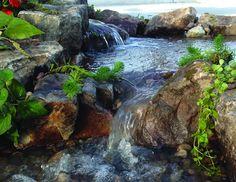 Waterfall created by Tropical Water Gardens. #WaterfallWednesday
