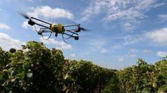 Drones alçam voo civil e se instalam na paisagem mundial