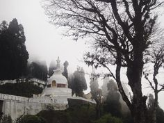 Network of Peace Pagoda build all over the world after Japan nuclear bombing. One of it on the top of Darjeeling.