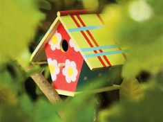 A wooden bird house painted with P.BO deco colours