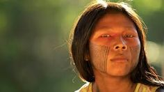 Image result for indios brasileiros zarabatana