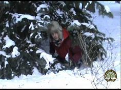 ▶ Winter Survival: Quick Pine Tree Shelter - YouTube