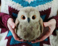 Новости · OwlBirds