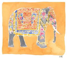 illustrations, Caitlin McGauley  inspired by her trip to India