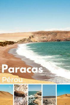 Paracas au Pérou, découvrez des paysages désertiques et une faune abondante mais fragile