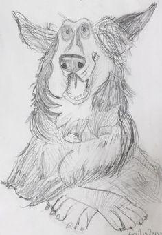 Dog caricature in pencil Emilia 9yrs