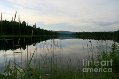 Silent Morning: This photograph was taken in the morning hours in the White Mountains in New Hampshire in July 2014.