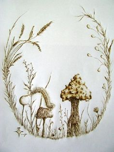 pyrography mushrooms and flowers