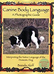 Canine Body Language - A Photographic Guide