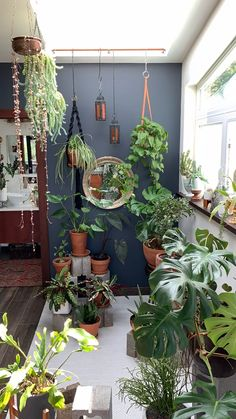 A sacred space redesign during the changing of seasons is a great way to transition from one season to the next. My houseplants get moved around with the seasons to make sure they get the right amount Hanging Plants, Indoor Plants, Balcony Plants, Indoor Gardening, Wall Of Plants, Plants In Bedroom, Indoor Plant Decor, Plants In Kitchen, Living Room With Plants
