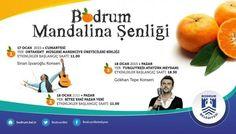 Bodrum Belediyesi tarafından 17 - 18 Ocak 2015 tarihleri arasında iki gün boyunca sürecek olan 'Bodrum Mandalina Şenliği'nde ünlü şarkıcı Gökhan Tepe de konser verecek. http://bodrum.bel.tr/haber/bodrum-mandalina-senligi-basliyor.html#.VLbFdiY5lUQ BODRUM MANDALİNA ŞENLİĞİ PROGRAMI 17 Ocak Cumartesi / Ortakent Müsgebi Narenciye Birliği önü Etkinlik başlangıç saati: 11.00  ·         Folklor gösterileri, ·         En İyi Ürün Yarışması, ·         Keşkek – Lokma ikramları, ·         Yerel…
