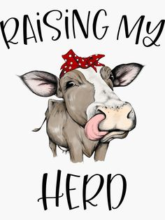 """""""Raising my Herd Cute Cow With Red Polka Dot Bandana"""" Sticker by hustlagirl Cute Cows, Funny Cows, Cow Gifts, Cow Shirt, Cow Painting, Vinyl Crafts, Resin Crafts, Expressions, Pretty And Cute"""