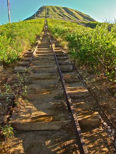 Koko Head Crater Trail...I think the inventers of the Stairmaster got the idea here.  #RIDECOLORULLY