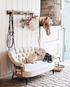 """3,886 Likes, 49 Comments - Dreamy Whites Lifestyle (@dreamywhiteslifestyle) on Instagram: """"The vintage French bridle rack is available in our online shop."""""""