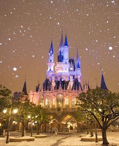 Tokyo Disneyland in the snow.. does it get any more magical??? <3