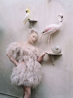 Tim Walker. Photography. Fashion. Exotic Birds. Pink. Magazine Photo shoot. www.origin-of-style.com