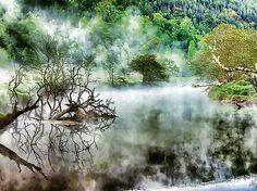 Lanjee Chee - A beautiful foggy spring morning
