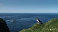 Isole Far Oer - Mykines e i puffin - Episodio 7