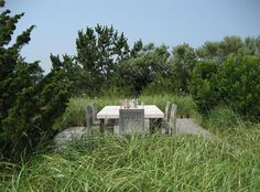 cross the footbridge to a deck surrounded by a sea of grasses/plants with maybe a day bed?