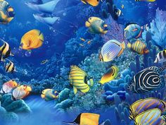 fishes in the sea | FISH_OF_THE_SEA_Wallpaper_jp90.jpg