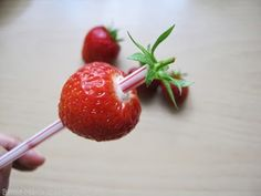 Bento-Mania.....verrückt nach der japanischen Lunch Box: Tipps & Tricks: Ganz einfach den grünen Blütenkelch einer Erdbeere entfernen