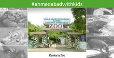 #AhmedabadwithKids We are sure that every one who has grown up in Ahmedabad has been here once. It has not changed much but is really clean and well maintained lately.  Moreover it is well shaded with trees and keeps cool even in hot summers. Do carry a stroller for you little one as it involves a lot of walking.  For more such awesome places in #Ahmedabad visit our blog post: http://theggis.com/ahmedabad-with-kids/