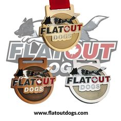 @ultimatepromotions posted to Instagram: #dogagility training is a comprehensive sport and #teameffort between a #dogtrainer and his working partner. @flatoutdogs  work together with your dog to meet #agility standards and have created these beautiful #medals that were created using a combination of #sandblasting and #softenamel with our standard red #ribbon attached.  We love the completed look of these medals.   #custommedals #sportsmedals #customracemedals #customawards #dogtraining… Sports Medals, Custom Awards, Pin Logo, Dog Agility, Red Ribbon, Dog Training, Your Dog, Enamel, Meet
