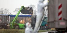 #Vogelgrippe: Das müssen Sie zur Vogelgrippe in NRW wissen - Kölner Stadt-Anzeiger: Kölner Stadt-Anzeiger Vogelgrippe: Das müssen Sie zur…