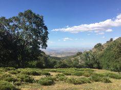 Summer Hiking in Sierra Nevada, Spain   #ecotourism