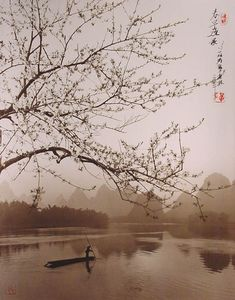 Photograph by Don Hong-Oai