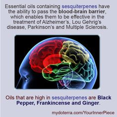 Help those you love with Alzheimer's, Lou Gehrig's disease, Parkinson's and Multiple Sclerosis