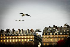 10 Reasons To Visit Paris in the Winter