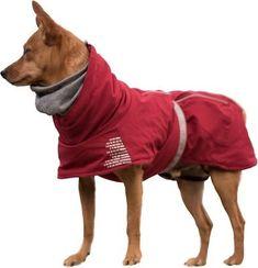 Dog Suit, Dog Winter Coat, Grey Dog, Dog Jacket, Outdoor Dog, Outdoor Gear, Dog Coats, Service Dogs, Pets