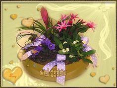 Igaz szeretettel köszöntelek Planter Pots, December