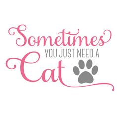 Silhouette Design Store - View Design #170344: sometimes you just need a cat
