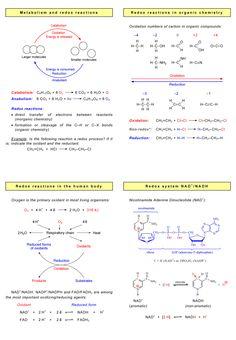 organic chemistry infographic | Redox reactions in (bio)organic chemistry