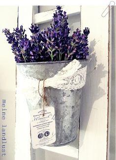 a lavender cottage .. X ღɱɧღ ||