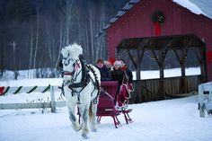 Sleigh Ride in Vermont's Winter, a sleigh ride is deff on my bucket list!