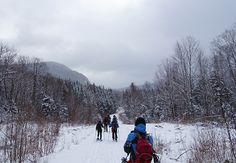 Chemin forestier aux abords du mont Marbre Crédit photo : MG Guiomar
