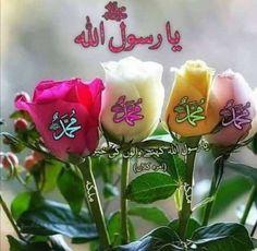 Muhammed Sav, Muhammad, Allah Wallpaper, Japanese, Ethnic Recipes, Doa Islam, Deen, Beauty, Flowers
