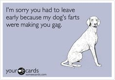 Dogs... they fart. A lot.