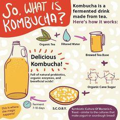 Cultured Kombucha's Guide to Kombucha Brewing Tea, Kombucha, Culture, Drinks, Health, Drinking, Beverages, Health Care, Drink