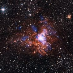 RCW 38. It is a young star cluster found slightly less than 6,000 light-years away in the constellation Vela. Home to many young, rapidly evolving stars, it is a great place for astronomers to study stellar evolution. Some of these young giants will one day explode as supernovas, seeding the area with material for the next generation of stars.