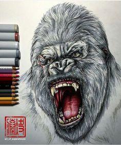 #gorilla drawing