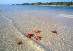Image result for Playa de Las Américas, Varadero, Cuba