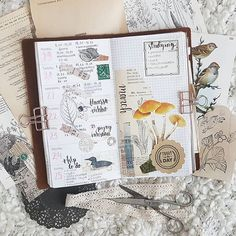 Weekly plannerspread ❄🕊 We had so many interesting lectures and stuff going on at school, but unfortunately i had to spend most of the week at home with flu. Travel Journal Pages, Journal Art, Journal Notebook, Glue Book, Hobonichi, Journalling, Bullet Journals, Travelers Notebook, Weekly Planner