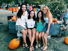 Take me to the pumpkin patch