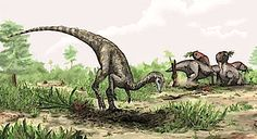 Earliest Known Dinosaur Discovered